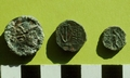 Photo of 3 hellenistic coins on green background. The left one depicts Demetrios Nikator.